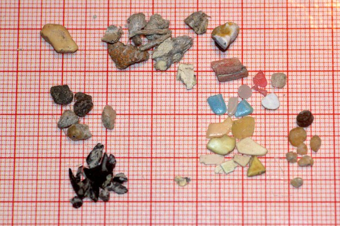 Plastic fragments found in great skua © Sjúrður Hammer