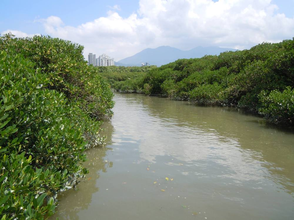 Taiwan's task: balancing development and conservation (3/4)