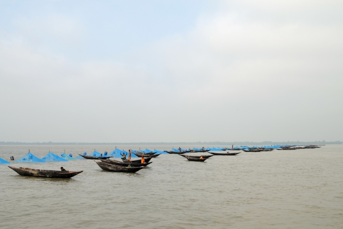 Prawn larvae fishing in the Sundarbans