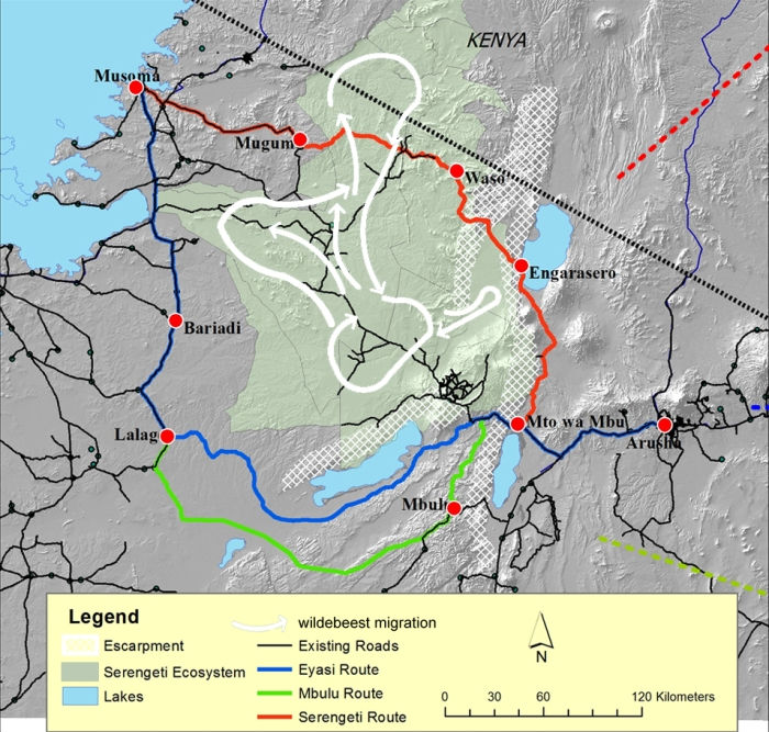 The three proposed routes. White arrows: Path of wildebeest migration. Adapted from Hopcraft et al. (2015) PLOSone.